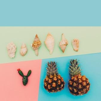 Zestaw tropików. ananas muszle kaktus. minimalna sztuka