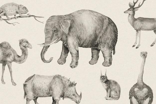 Zestaw zwierząt w stylu vintage z safari