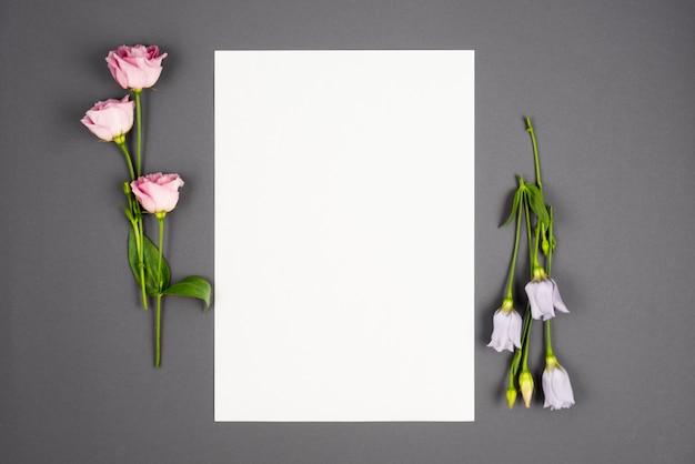 Zestawy pastelowych kwiatów oprawiających pustą przestrzeń