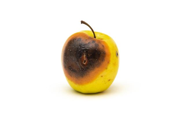Zgniłe jabłko na białym tle