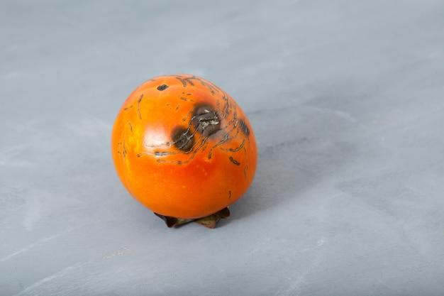 Zgniłe zepsute persimmon na szarym tle. redukcja odpadów organicznych.