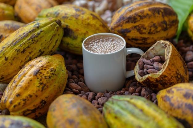 Ziarna kakaowe i owoce kakaowe na drewnianych