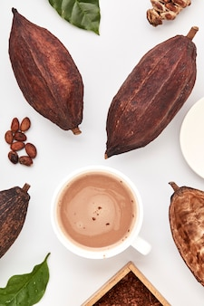 Ziarna kakaowe w strąkach na białym tle