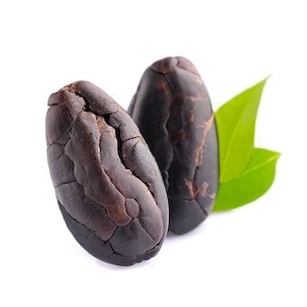 Ziarna kakaowe z liśćmi