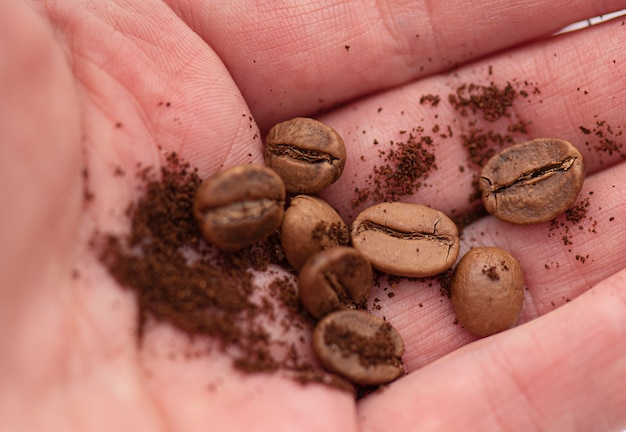 Ziarna kawy i mielona kawa w dłoni