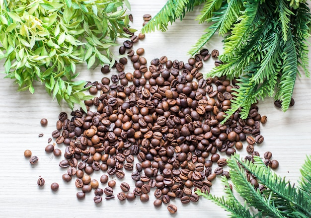 Ziarna kawy i zielone gałęzie