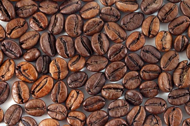 Ziarna kawy na białym tle