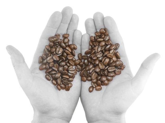 Ziarna kawy na czarno-białych rękach. na białym tle.