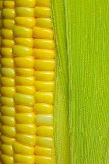 Ziarna kukurydzy makroziarna dojrzałej kukurydzy obraz makro