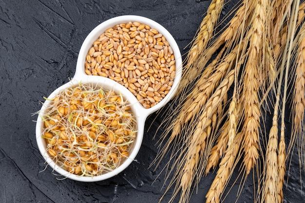 Ziarna pszenicy suche i porośnięte białą płytką z kłosami pszenicy. ziarna organiczne dobre do sałatek, zdrowej żywności. zbliżenie