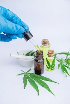 Ziele konopi indyjskich i liście na bulion leczniczy, nalewkę, ekstrakt, olej.