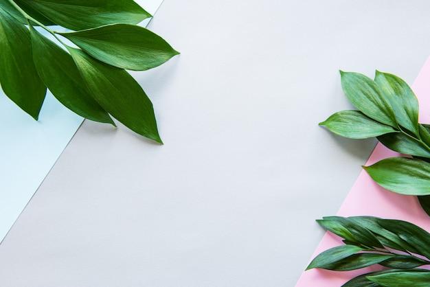 Zieleń liście na pastelowym tle