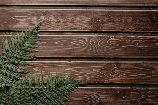 Zieleń paproci leży na ciemnym drewnie