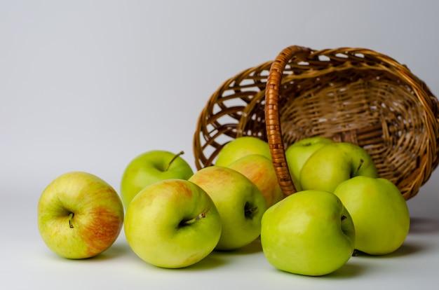 Zieleni jabłka i kosz na bielu. prace ogrodowe