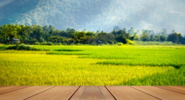 Zieleni pola w dolinnym pięknym krajobrazie phulua loei, thail