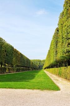 Zielona brama w ogrodzie. piękny wersal, francja