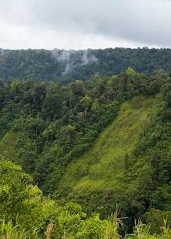Zielona bujna dolina i góra w kostaryce