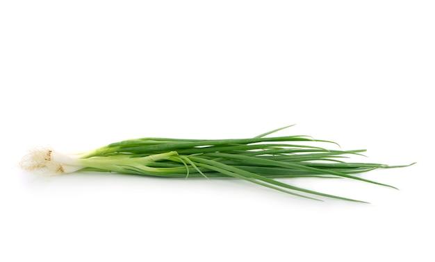 Zielona cebula na białym tle na białej powierzchni