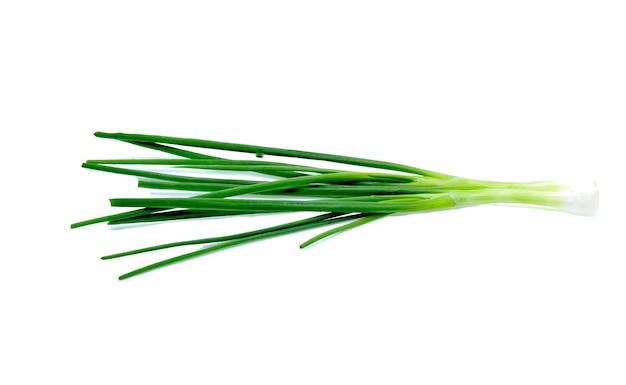 Zielona cebula na białym tle