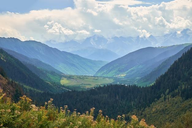 Zielona dolina w georgian svaneti górach pod chmurami