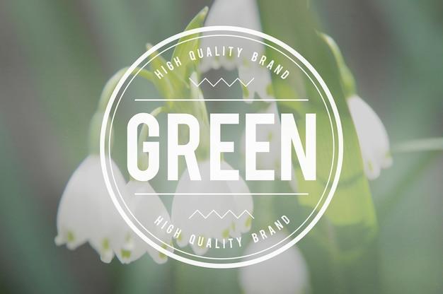 Zielona ekologia koncepcja ekologicznej ziemi ekologicznej