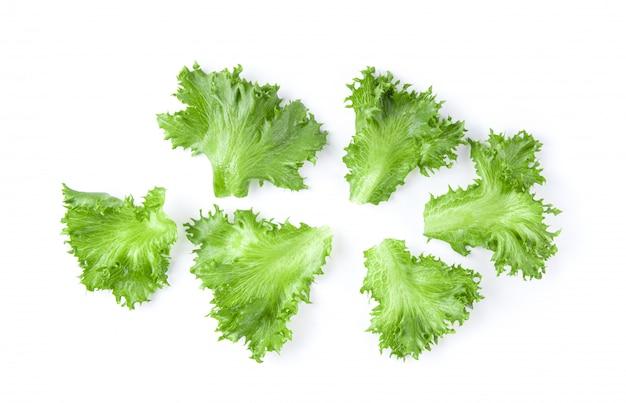 Zielona frillies góra lodowa sałata na biel ścianie