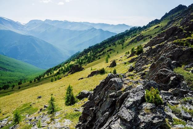 Zielona górska sceneria z żywą zielenią zbocza gór z lasem iglastym i skałami.