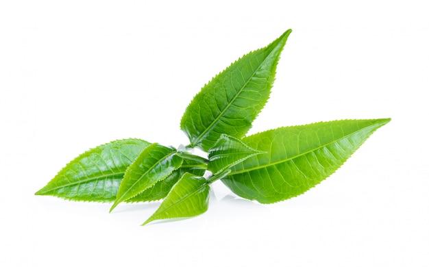 Zielona herbata liście na bielu stole