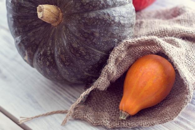 Zielona i pomarańczowa dynia w woreczku z konopi