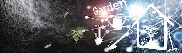 Zielona kiełka na ziemi. koncepcja wiosny. sadzonki w ziemi. aktualizowanie natury to pomysł. ręce sadzą kiełki w ziemi.