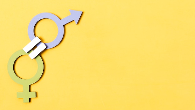 Zielona kobieta i niebieski płci męskiej symbole jakości koncepcja kopia przestrzeń
