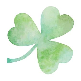 Zielona koniczyna ilustracja akwarela