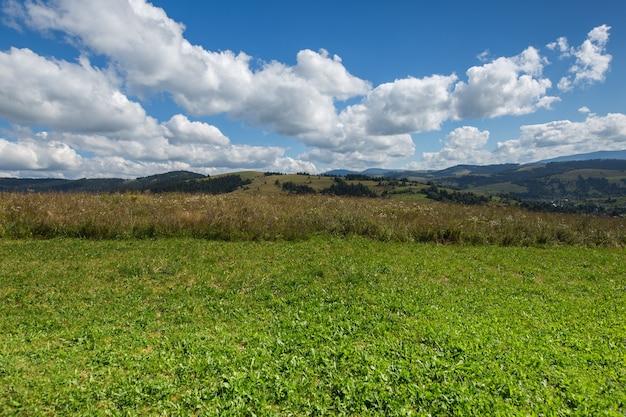 Zielona łąka, góra i błękitne niebo z chmurami