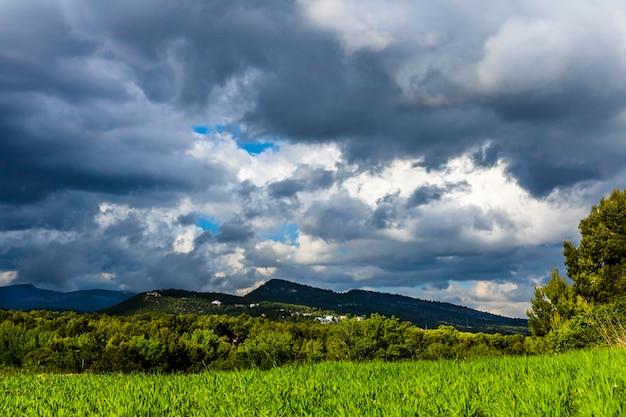 Zielona łąka na dzień z białymi i szarymi chmurami z górami w tle.