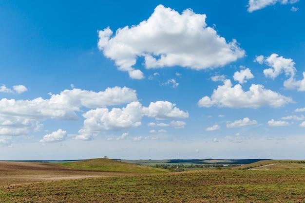 Zielona łąka pod błękitnym niebem z chmurami. piękna przyroda, krajobraz.