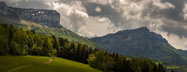 Zielona łąka ze ścieżką prowadzącą do odległych gór z mnóstwem drzew w alpach