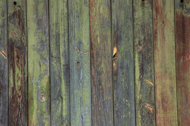 Zielona mennica malował drewno deski teksturę i tło.
