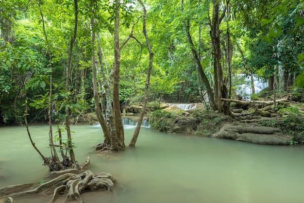 Zielona natura z zielonym wodospadem krajobraz
