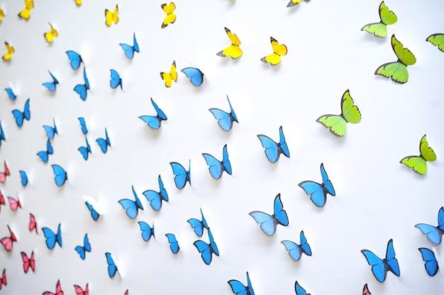 Zielona, niebieska, żółta grafika motyla pojawia się w 3d na białej, czystej ścianie