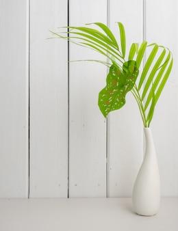Zielona palma lraf i kaladium w nowoczesnym wazonie na białym drewnianym stole i tle z kopią przestrzeni, delikatny ton martwa natura