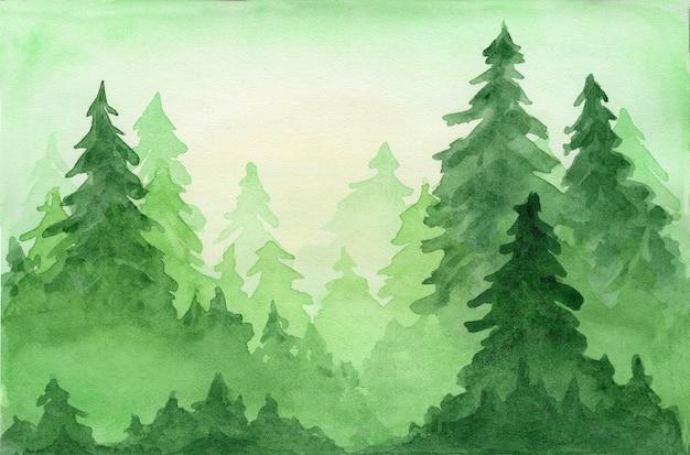 Zielona piękna akwarela z iglastym lasem jodłowym w promieniach słońca