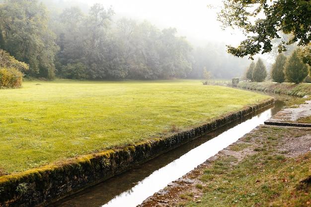 Zielona polana w lesie i kanał wodny lub strumień lub rzeka.