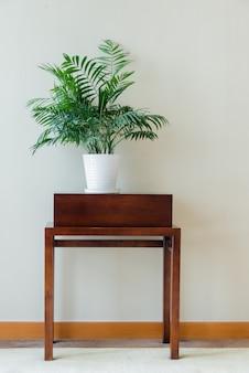 Zielona roślina doniczkowa na klasycznym drewnianym stole