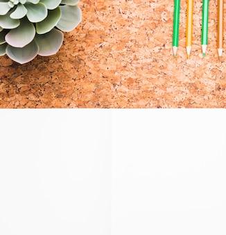 Zielona roślina i ołówki