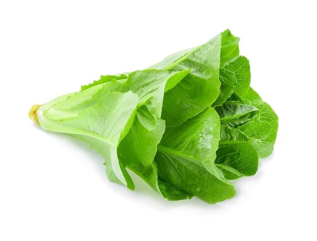 Zielona sałata cos na białym tle.