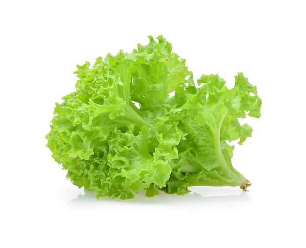 Zielona sałata dębowa na białym tle.