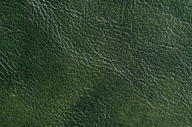 Zielona skóra tło