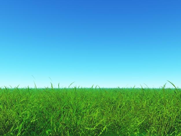 Zielona trawa i niebieskie niebo
