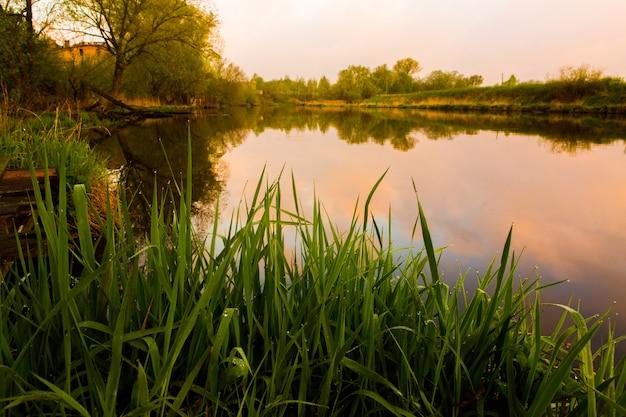 Zielona trawa na tle rzeki o wschodzie słońca. piękny krajobraz przyrody wcześnie rano
