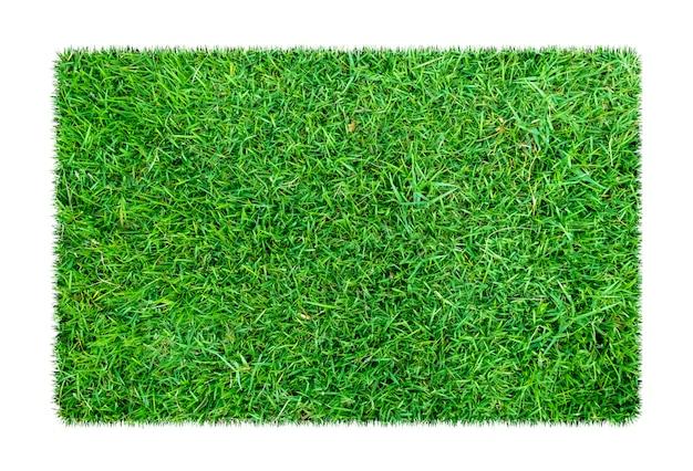 Zielona trawa. naturalny tekstury tło. świeża wiosna zielona trawa